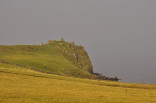 Szkocja (14)