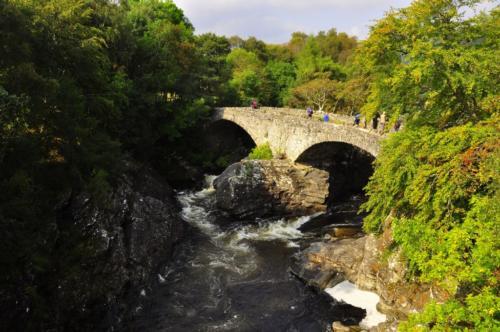 Szkocja (5)